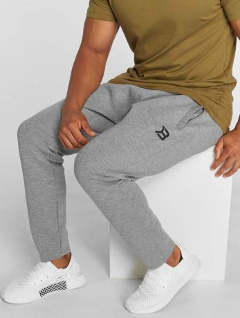 Better Bodies Männer Jogger Pants Astor in grau