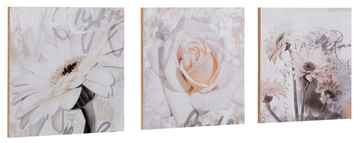 "Home affaire Kunstdruck , weiß, 29x29cm, ""S., D.: Gerberas Detail"""