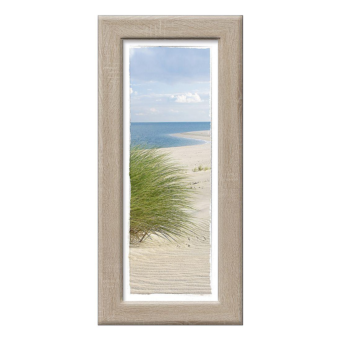 Kunstdruck Sand sedge I, Pro Art
