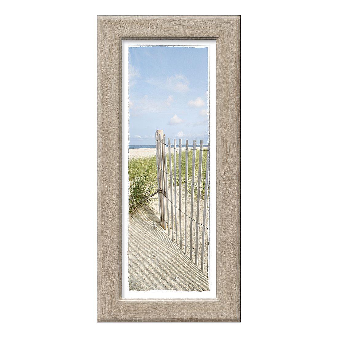 Kunstdruck Sand sedge III, Pro Art