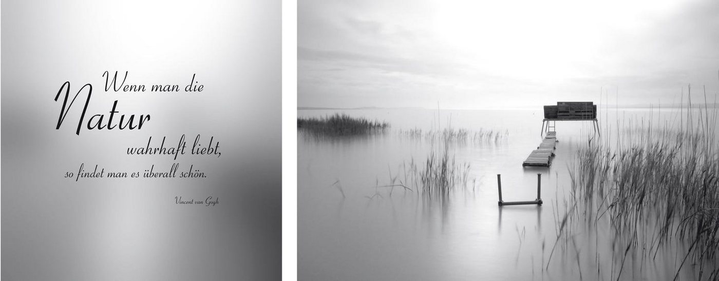 "Leinwandbild , grau, 100x40cm, ""Natur überall"","