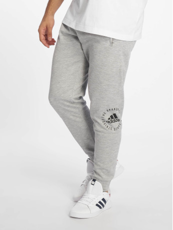 adidas Performance Männer Jogger Pants Sid in grau