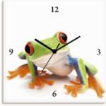 Artland Wanduhr Großaufnahme eines Frosches vor weiß, lautlos, ohne Tickgeräusche, nicht tickend, geräuschlos - wählbar: Funkuhr o. Quarzuhr, moderne Uhr für Wohnzimmer, Küche etc. - Stil: modern